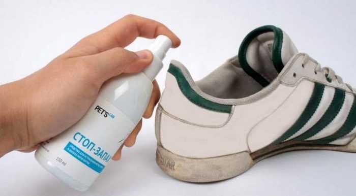 Средства для обработки обуви